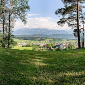Aussicht von Eschenbach in die Glarner Alpen