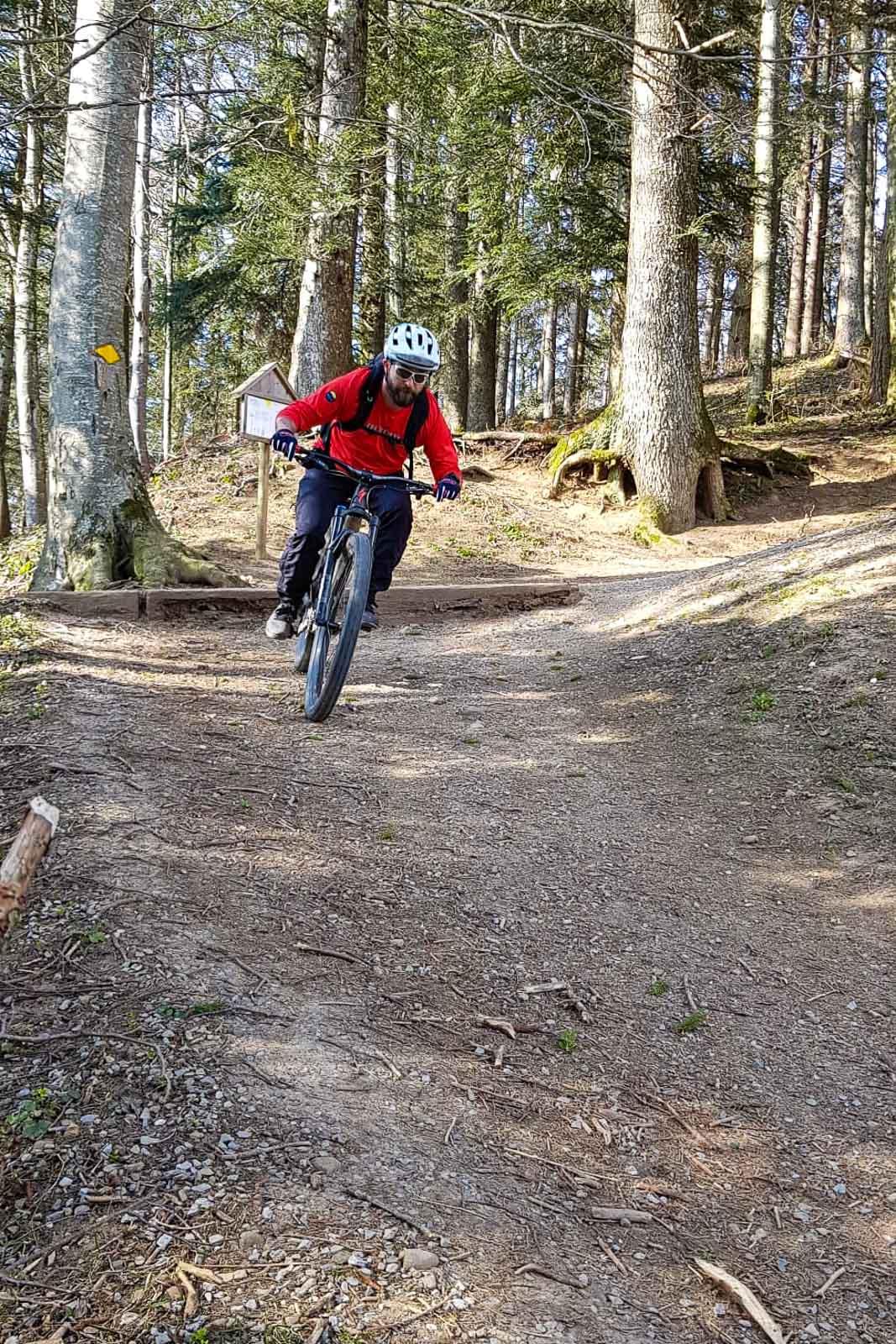 Downhill vom Bachtel