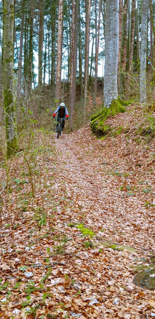 Hüebli Trail