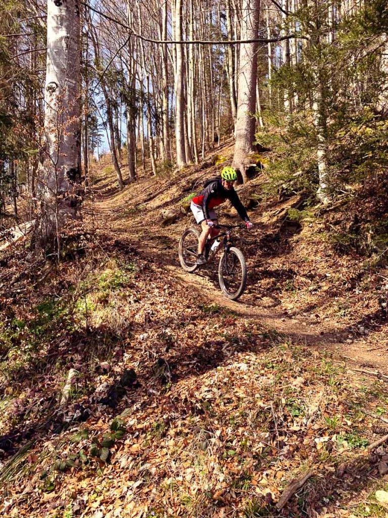 Andi Downhill Josenberg