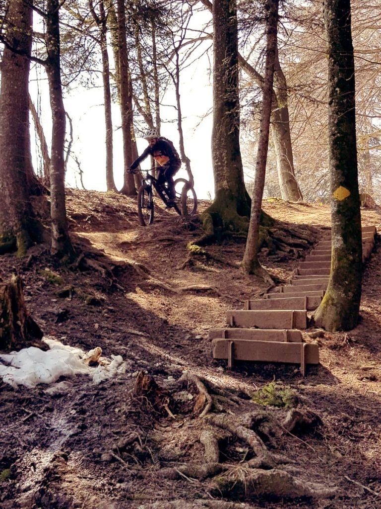 Roger Downhill Allmen2