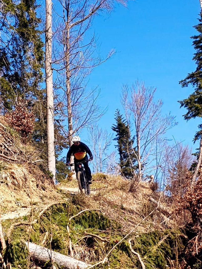 Roger Downhill Steg